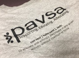 Support PAVSA